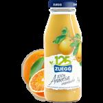 1423141278.41_succo-di-frutta-arancia