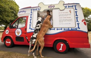 The world's first ice cream van for dogs is created to celebrate the Boomerang Pets Party.