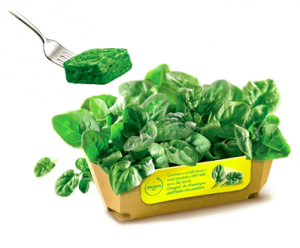 verdure 2
