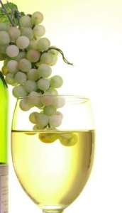 Gardini vino