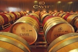cantina-cavit01