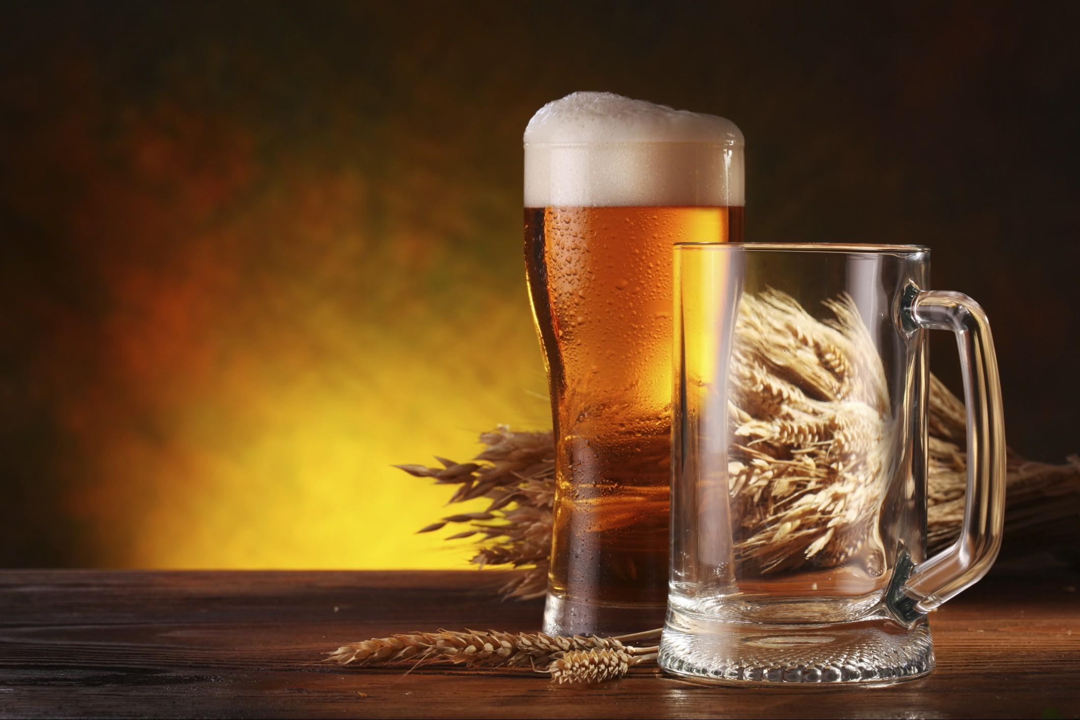 Sei una fan della birra Ecco i corsi e i master che ti insegnano a diventare un mastro birraio deccezione e a fare carriera nel settore