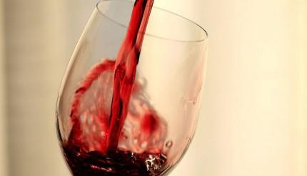 Salento: vino Negramaro