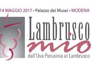 Lambrusco Mio